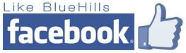 Follow Bluehills Glass and Beads on Facebook